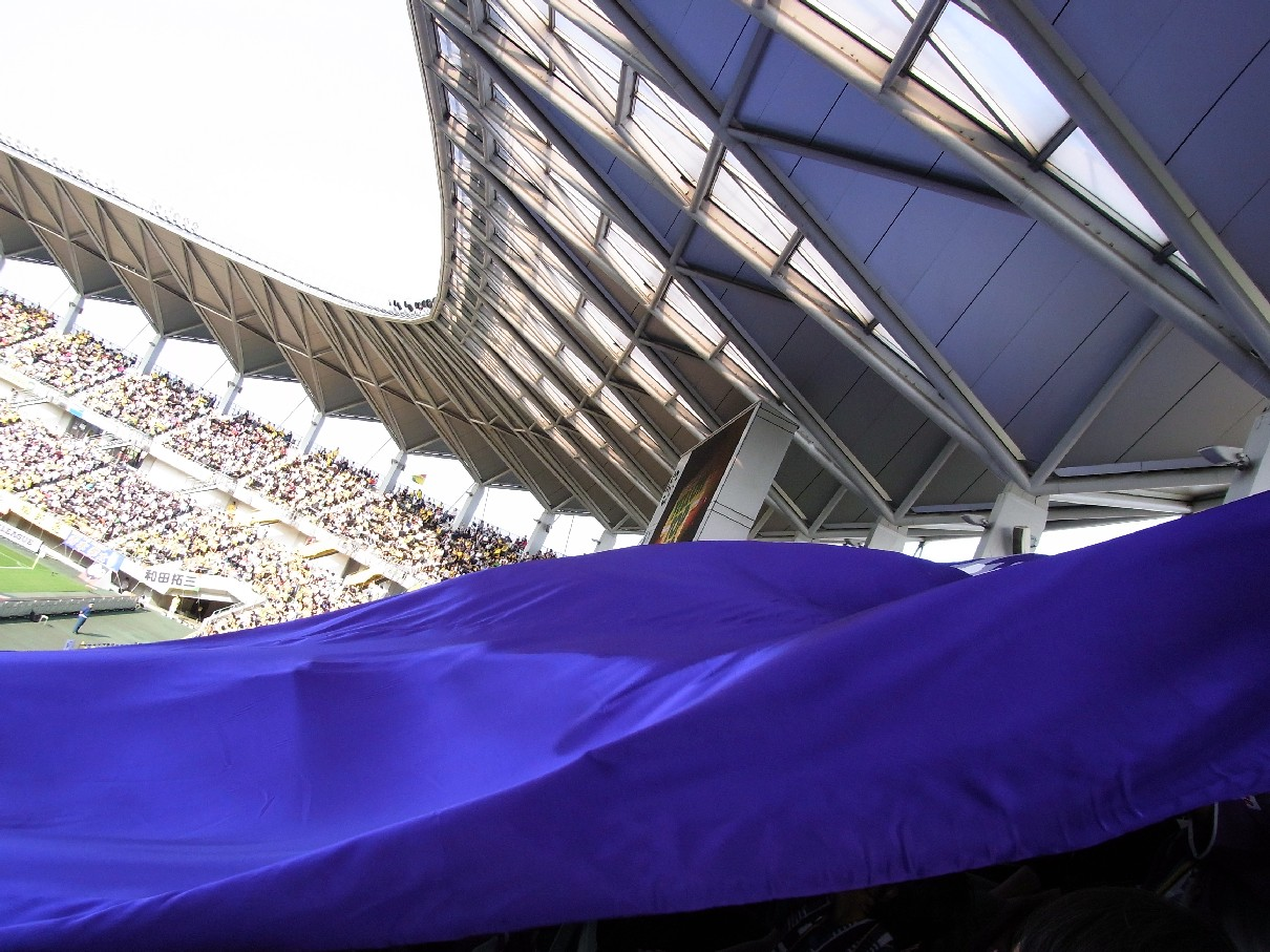 紫幕.jpg